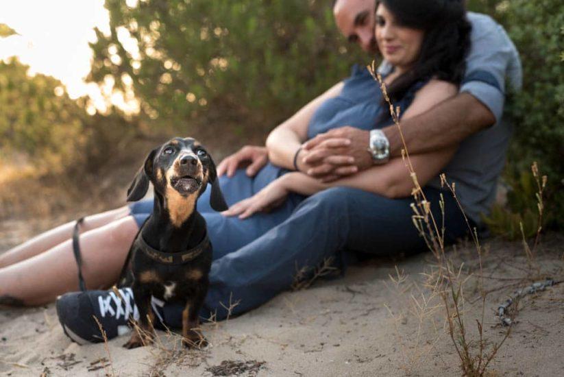 foto coppia con cane